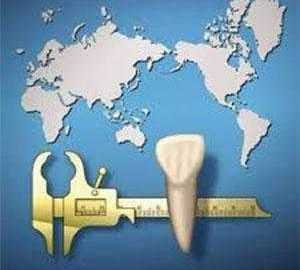 Dental Anthropological Association