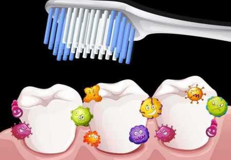 Stomatološka poliklinika Apolonija, četkica za zube i bakterije na zubima
